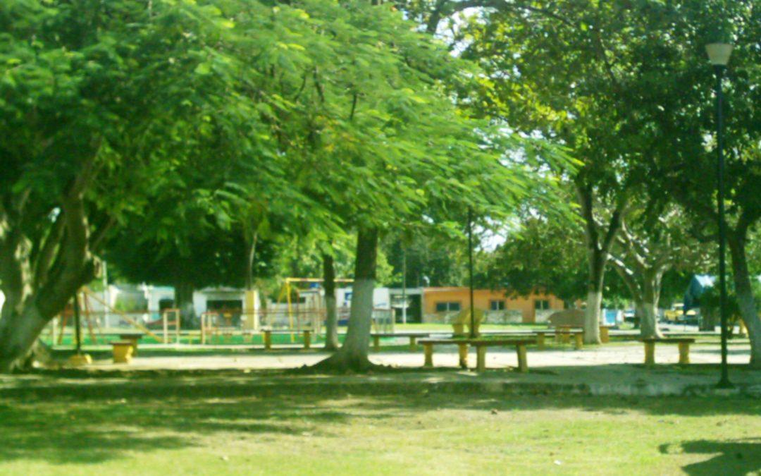Ciudades de avanzada con parques y sin concreto