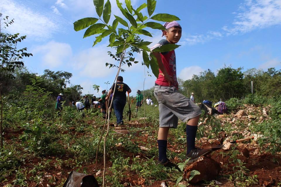 Reserva Cuxtal: oportunidad para lograr el bienestar social en Mérida