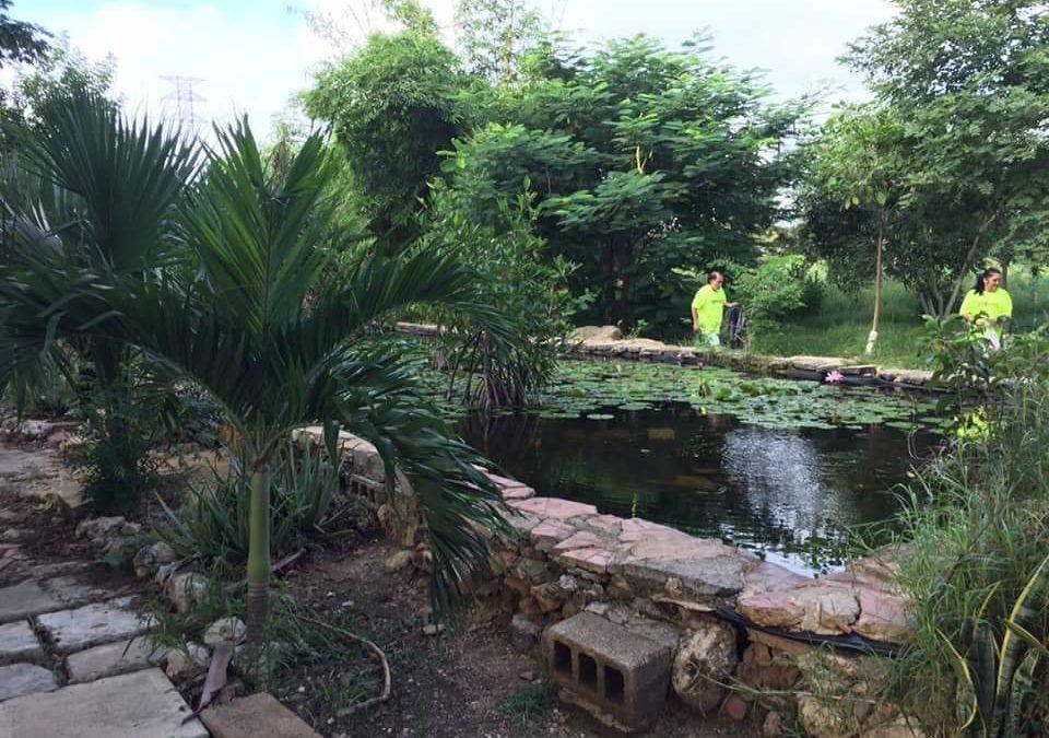 Del estanque al Megaparque: 18 años de esfuerzo vecinal